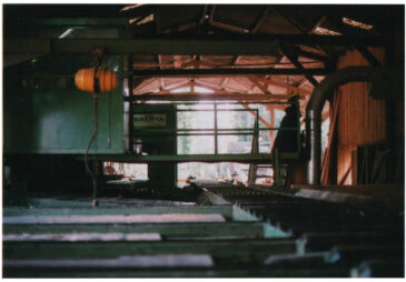Local sawmill - inside